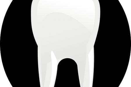 זגוגית השן